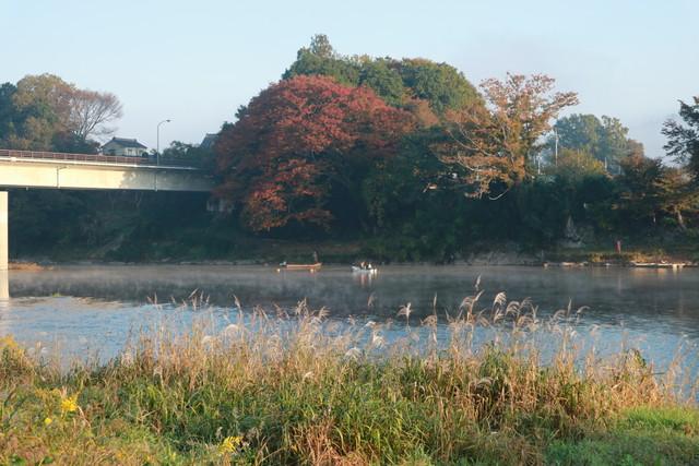 オートキャンプ那珂川ステーションからの那珂川