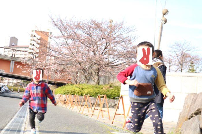 東京運河のスカイツリー航路でカヤックをした後に遊ぶ