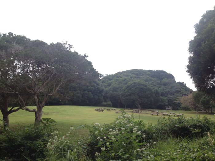 大房岬キャンプ場の広場