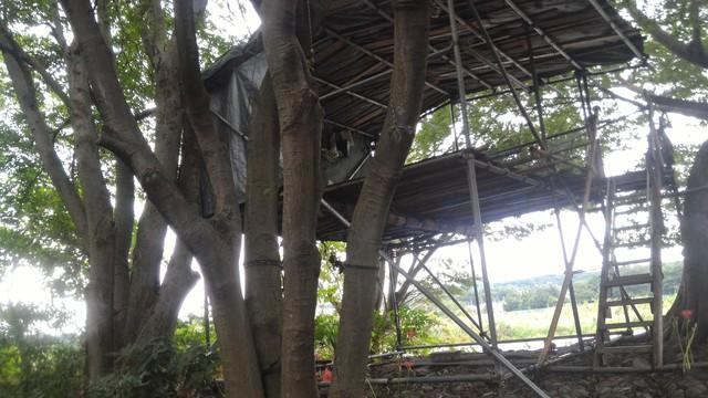 猿ヶ島辺りの相模川の溜まり(磯部の堰)の緊急避難所