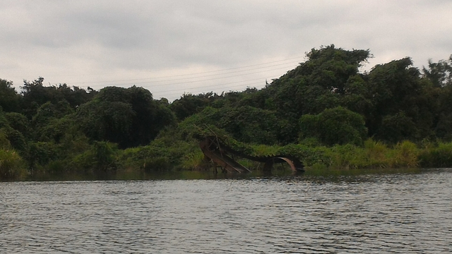 猿ヶ島辺りの相模川の溜まり(磯部の堰)をカヤックで探検