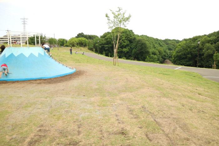 芹沢公園の風景