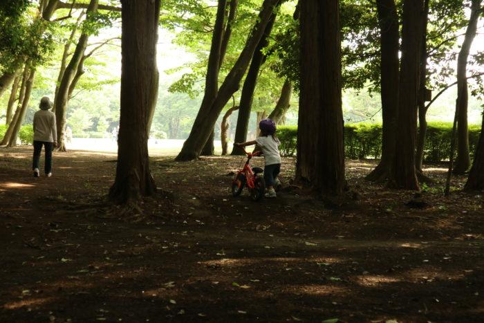 芹沢公園で自転車でクロスカントリー