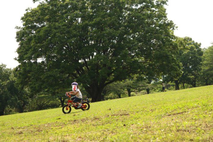 芹沢公園の芝生の広場で自転車
