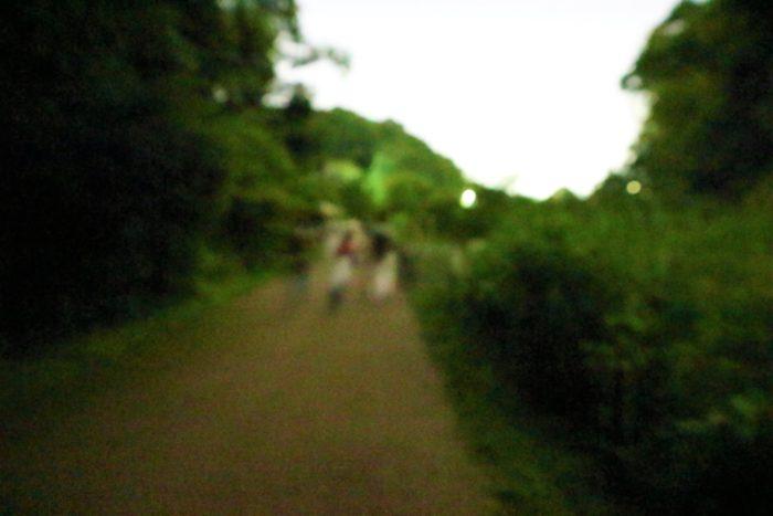県立座間の谷戸山公園に蛍鑑賞に来ました。