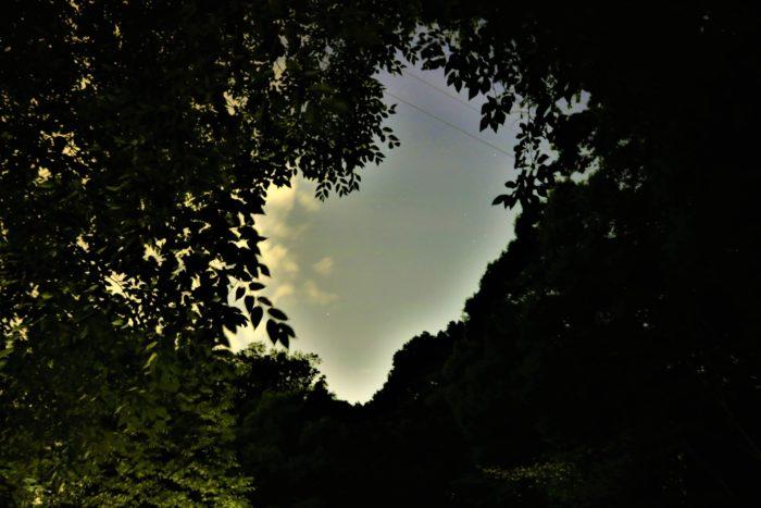 県立座間の谷戸山公園に蛍鑑賞に来ました。星空撮影
