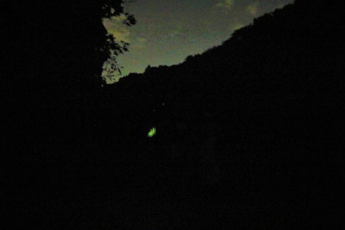 県立座間の谷戸山公園に蛍鑑賞に来た帰り道