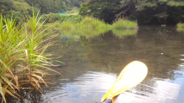 群馬県の四万湖でカヤックした時の浮島辺り