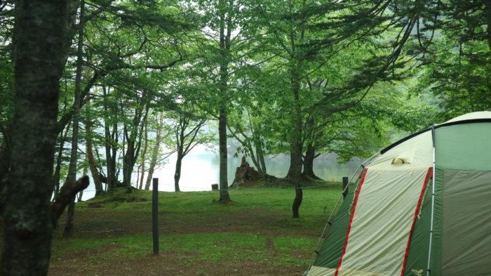 菅沼キャンプ村の葵の広場の境界線