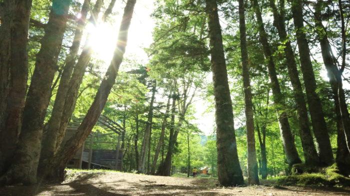 菅沼キャンプ村の朝