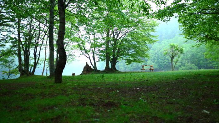 菅沼キャンプ村の湖畔の夕方
