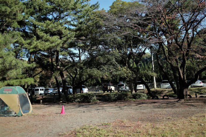 上大島キャンプ場でデイキャンプの設営前の風景
