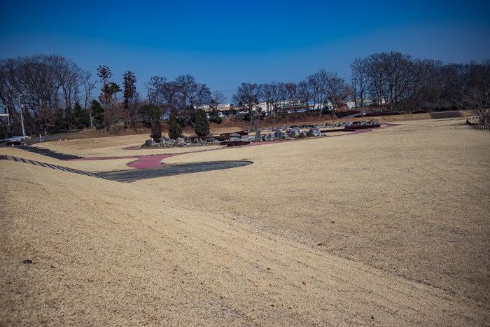 蔓巻公園キャンプ場のサイト脇の芝生