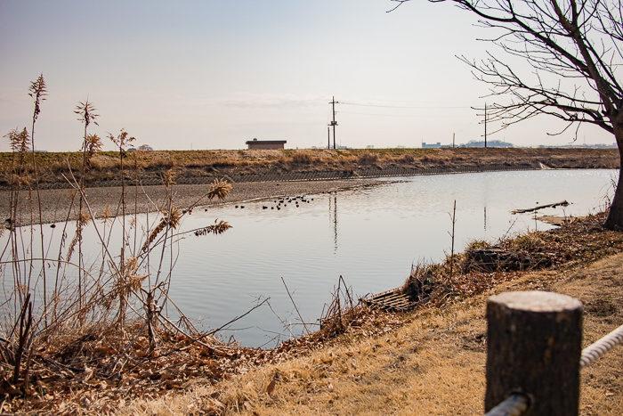 蔓巻公園キャンプ場の脇の姿川