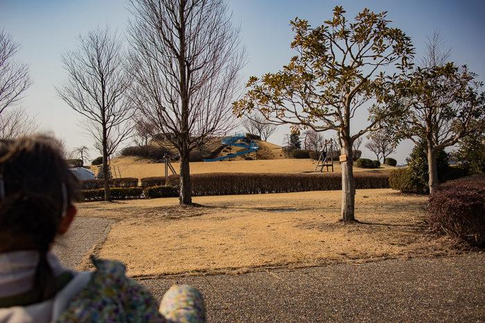 蔓巻公園キャンプ場の築山を目指す