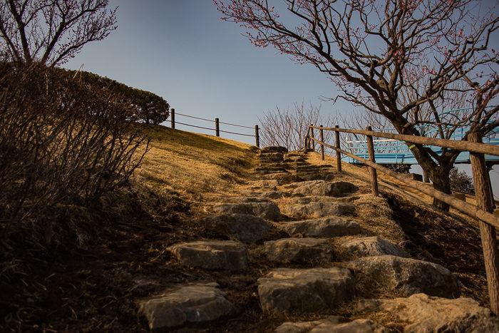 蔓巻公園キャンプ場の築山を登頂する
