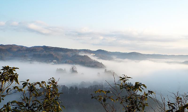 引用:鷲の巣キャンプ場 雲海写真