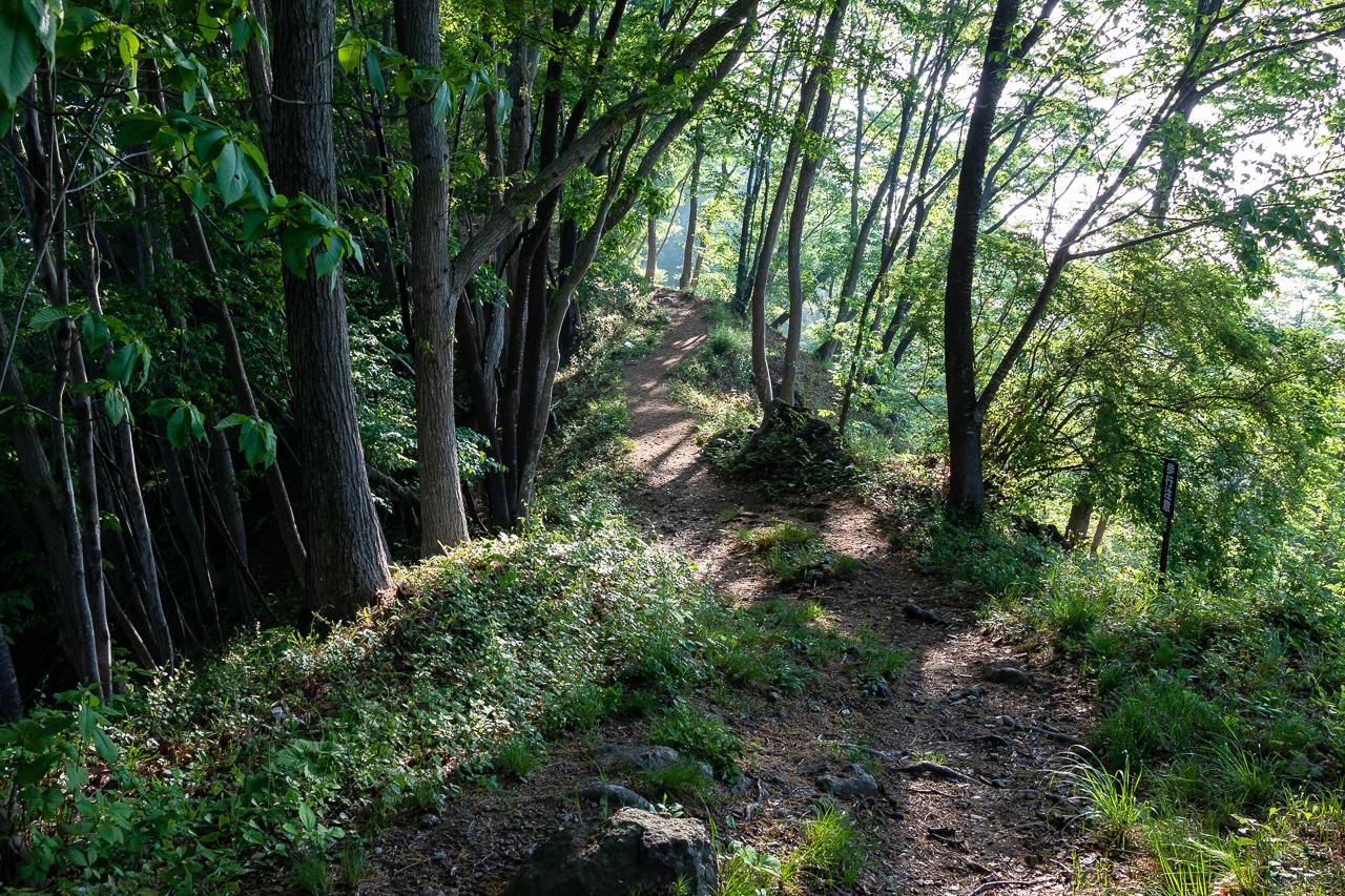 鎌倉山展望台までの山道