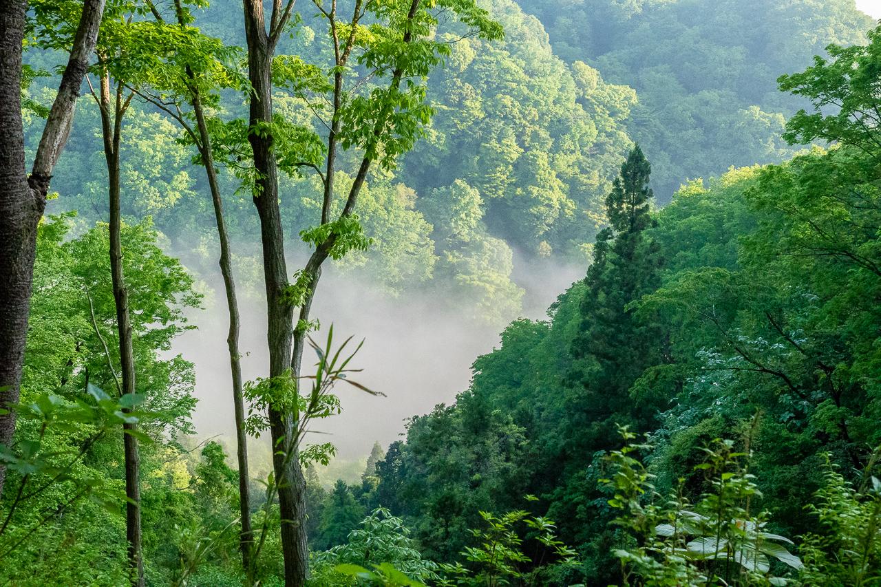 鎌倉山からの山際の雲海の眺め