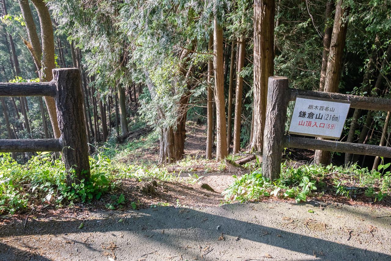 鎌倉山の山頂へ向かう山道