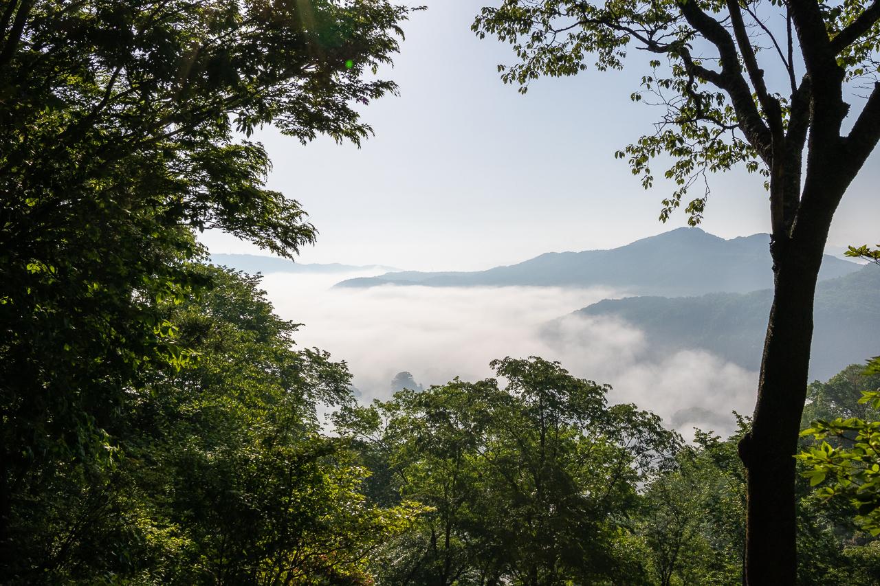 鎌倉山からの雲海の眺め