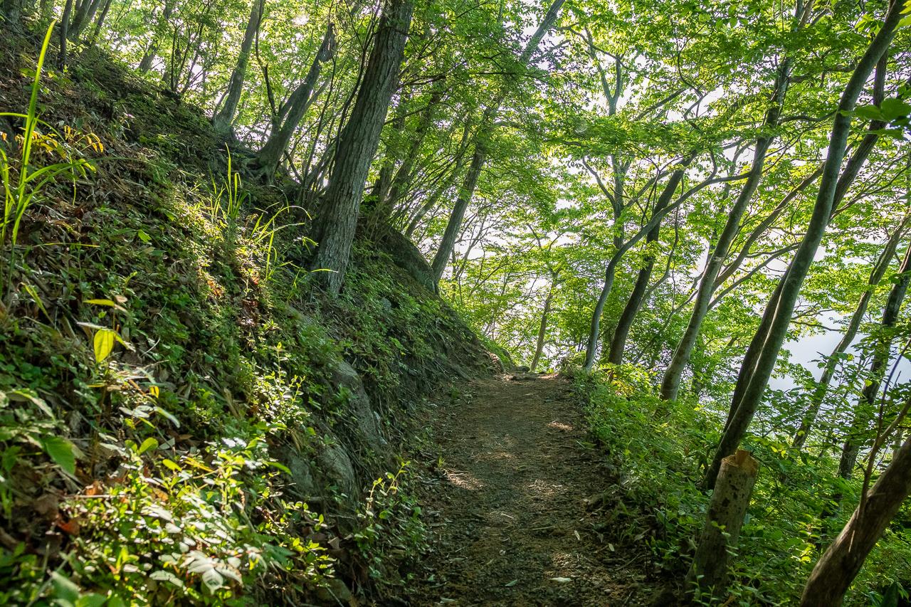 鎌倉山展望台への山道