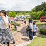 終・2018年春、益子陶器市と笠間の陶炎祭とキャンプと雲海?!