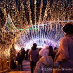 今年も神奈川県にある宮ヶ瀬湖のイルミネーションに行ってきました!