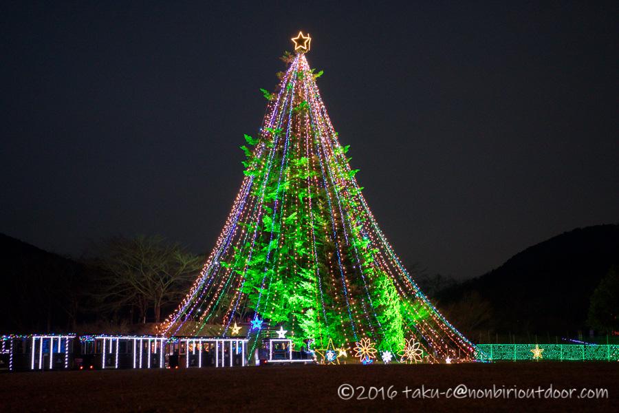宮ヶ瀬湖イルミネーションの大きなクリスマスツリー