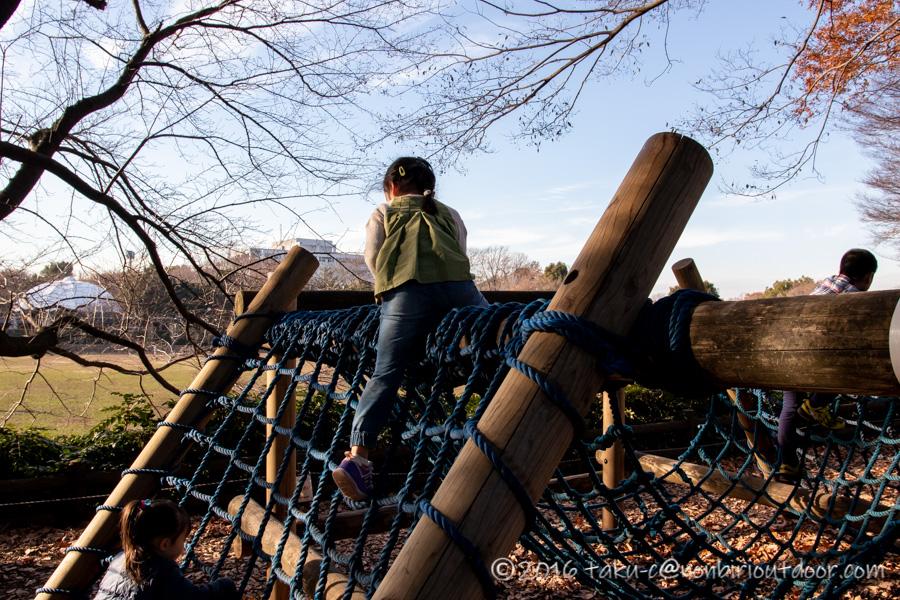 麻溝公園のアスレチック