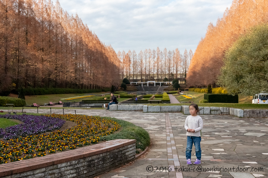 県立相模原公園の噴水広場