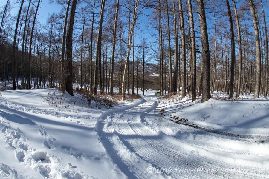 五光牧場オートキャンプ場で雪中キャンプでそり遊び