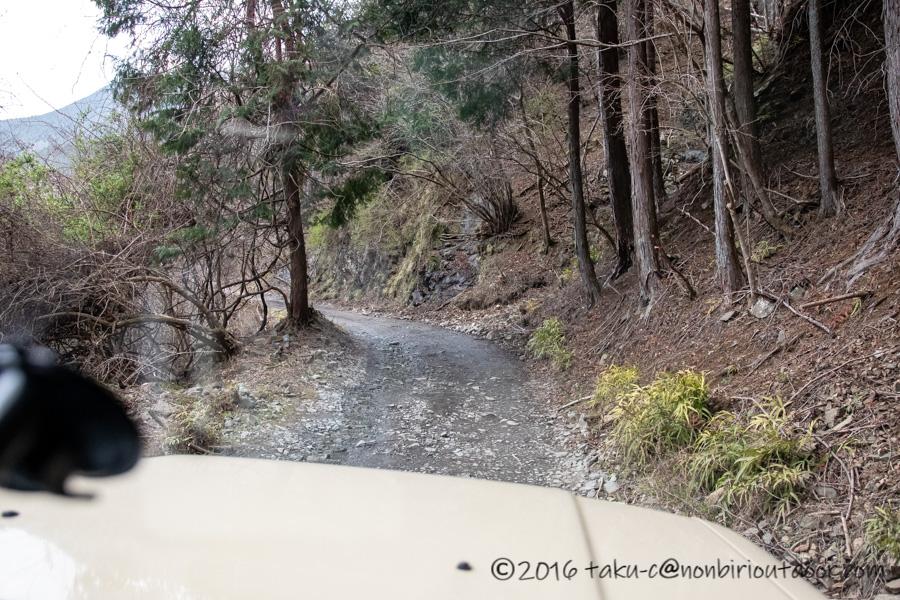 某県某所の野営地の林道