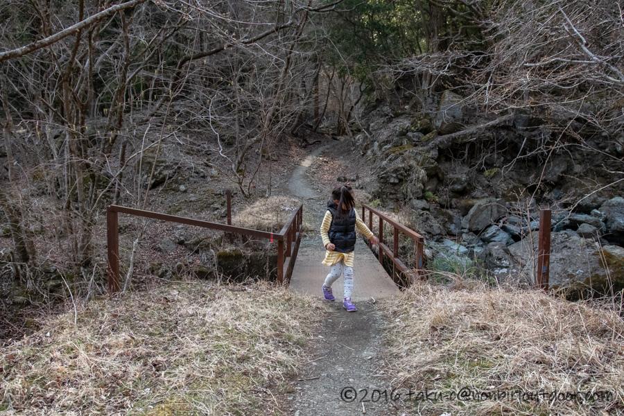 某県某所の野営地でなんちゃってハイキング