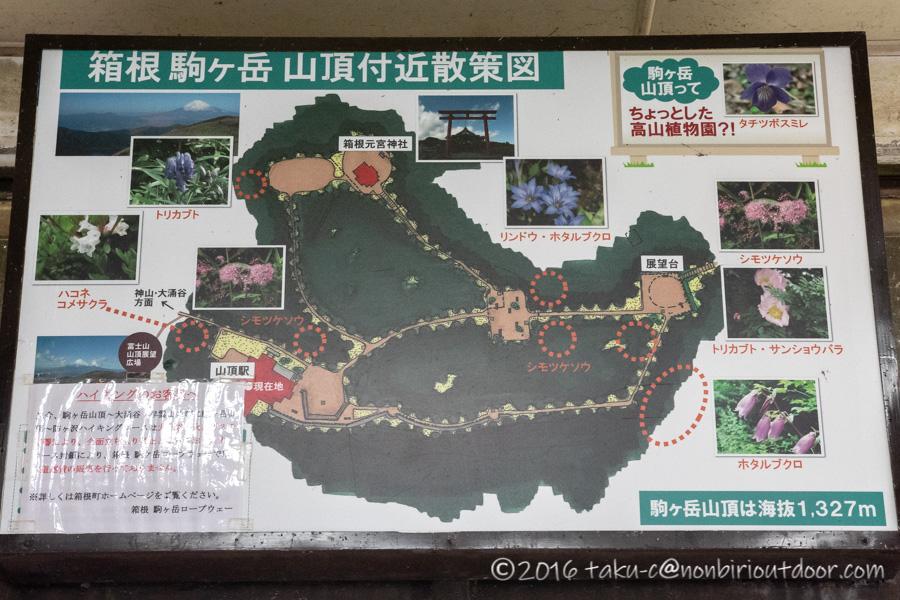 箱根の駒ヶ岳山頂の地図