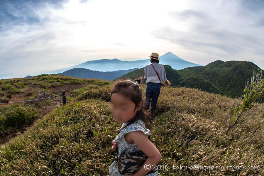 箱根の駒ヶ岳山頂からの笹と富士山