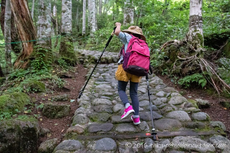 千畳敷カールへ行くための駒ヶ岳ロープウェイのしらび平駅の裏手
