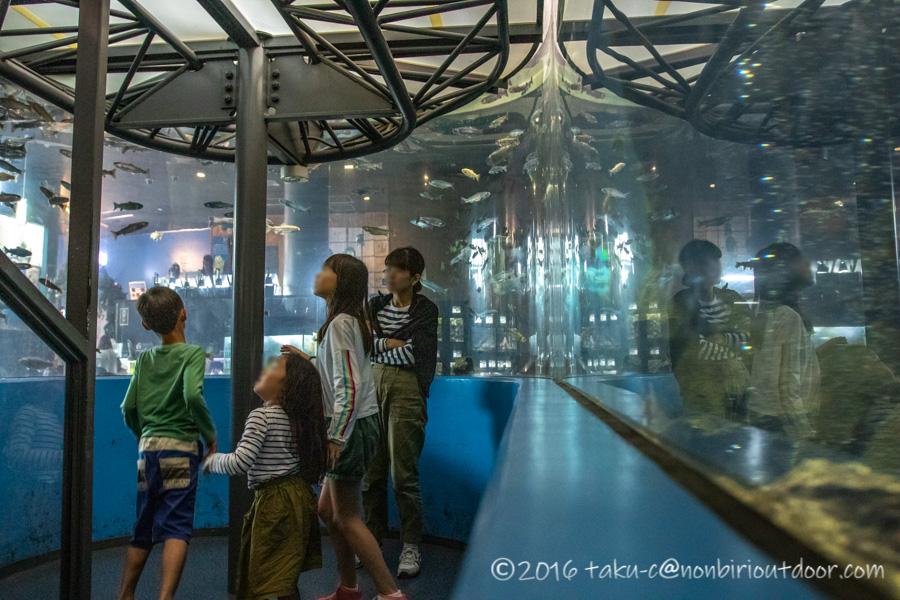 富士湧水の里水族館の館内
