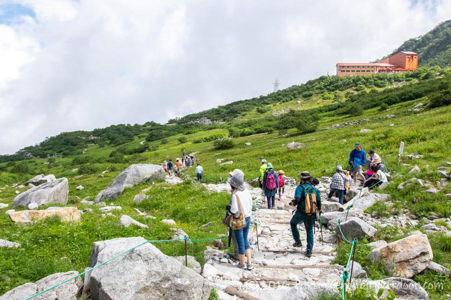 千畳敷カールでの高山植物観察のロケーション