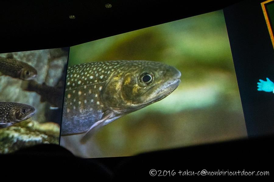 富士湧水の里水族館のシアター