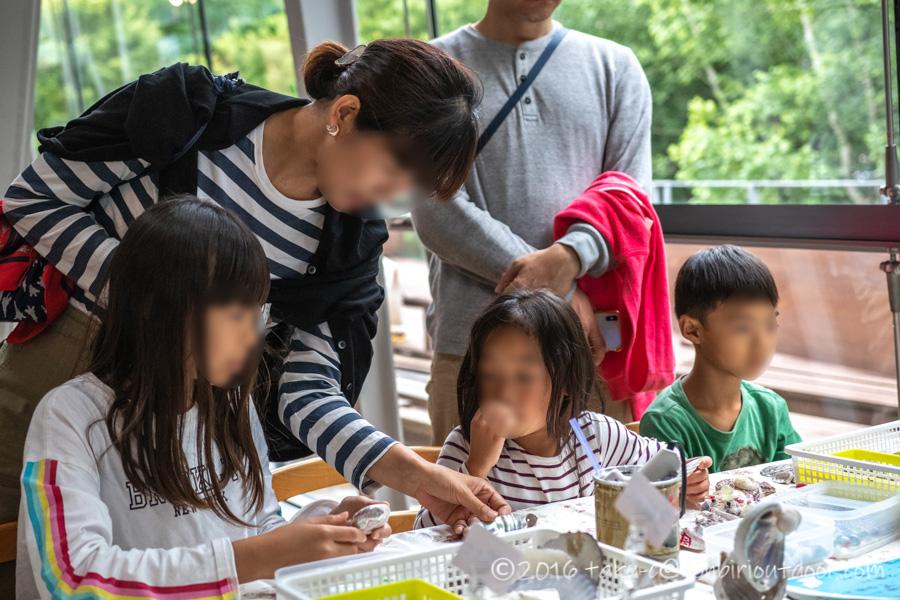 富士湧水の里水族館でワークショップ