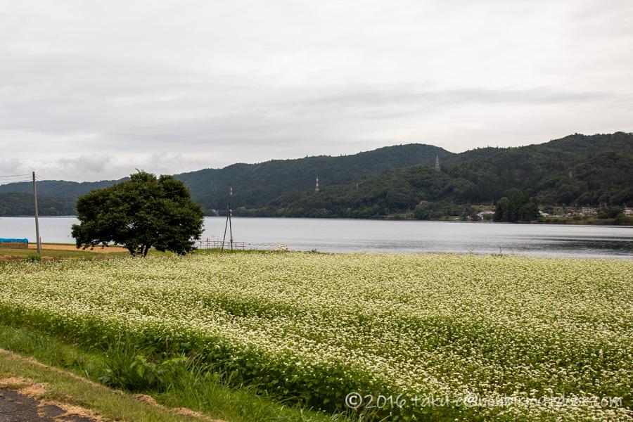 秋の青木湖の風景