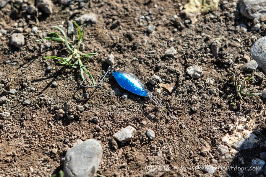 人生初のルアーでの5匹目のマスを釣りあげたルアーはハイバースト1.6g青銀