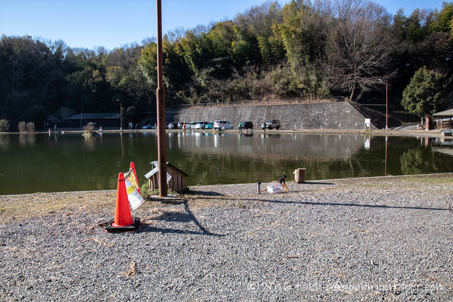 2021年2月3日のFish on 王禅寺のジロー池の端で釣り始めました