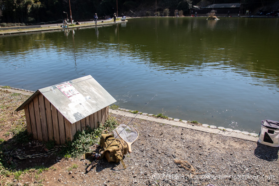 2021年2月17日のFish on 王禅寺のジロー池の様子