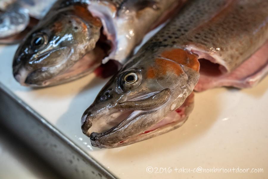 うらたんざわ渓流釣り場のルアーで釣れたニジマス