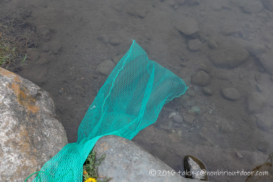 2021年3月17日のフィッシングフィールド中津川で釣れたニジマス