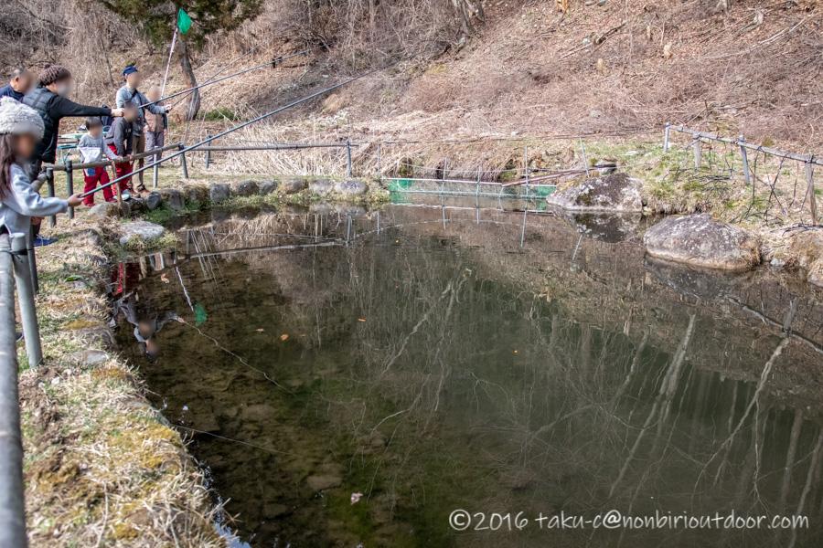 湯島オートキャンプ場の釣り堀で鱒釣り