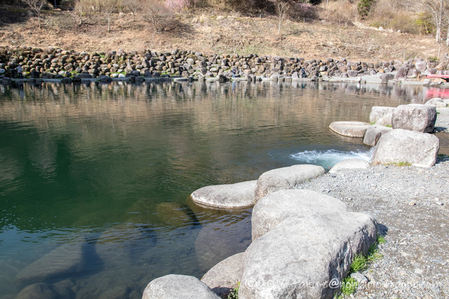 アウトドアビィレッジ発光路の森フィッシングエリアの3号池での大物ニジマス釣り