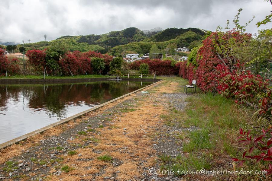 神奈川県伊勢原市の管理釣り場のBreezeさんの池